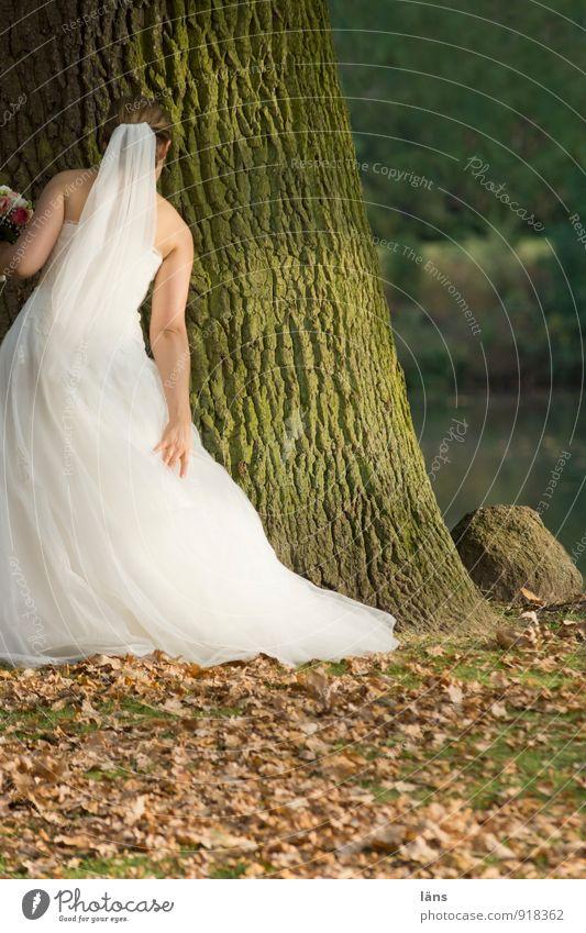 trau dich... elegant Stil Feste & Feiern Hochzeit feminin Junge Frau Jugendliche 1 Mensch Herbst Baum Eiche Park Brautkleid Blumenstrauß festhalten stehen weiß
