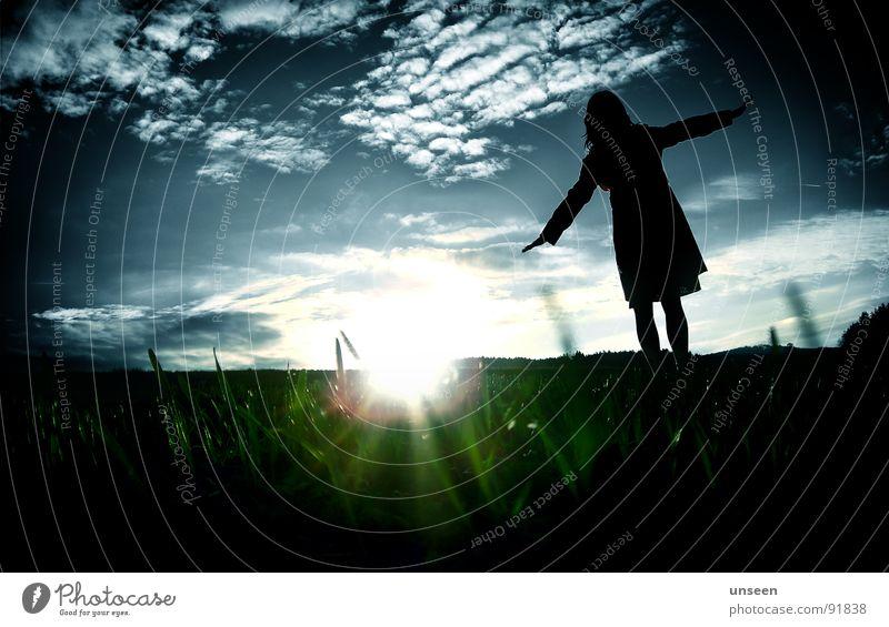 come on come on grün Frau Sonnenuntergang Wiese Wolken fliegen Freude blau Silhouette ne menge gras flieg du kuh