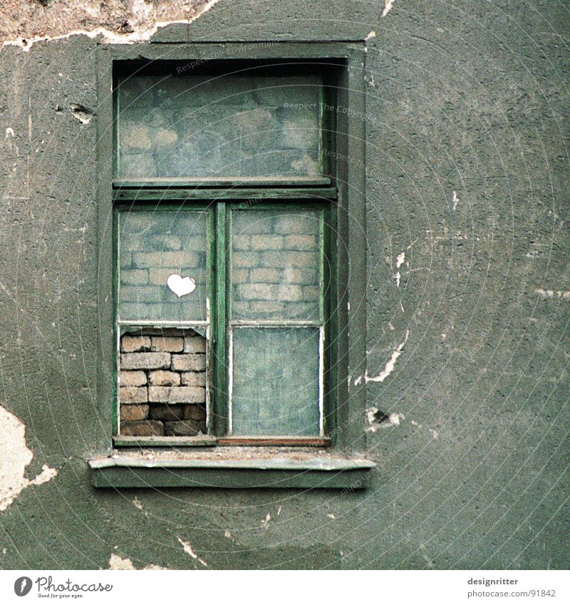 privat Fenster Mauer Privatsphäre grün Abrissgebäude verfallen geschlossen Ferne alt verbaut window closed bricked walled distance