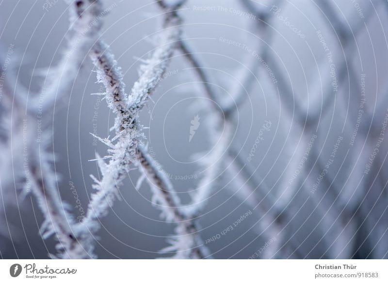 Maschendraht Natur Ferien & Urlaub & Reisen blau weiß Erholung ruhig schwarz Winter Schnee Metall Eis Schneefall elegant Tourismus Ausflug Frost