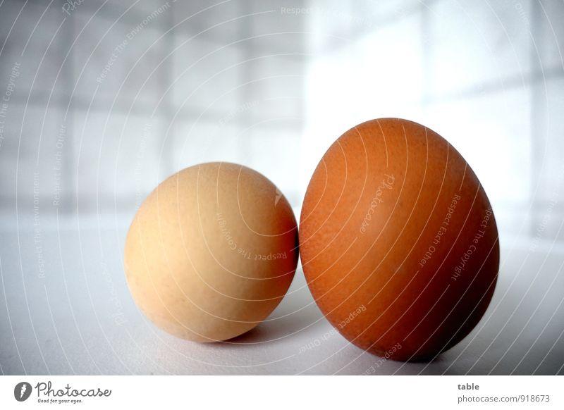 . . . mag jemand `n Frühstücksei? Lebensmittel Ei Hühnerei 2 Ernährung Küche Gastronomie liegen stehen frisch Gesundheit lecker rund Sauberkeit braun grau weiß