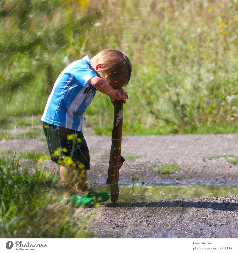 Kurze Denkpause Mensch Kind blau grün Sommer ruhig Gras Junge klein Denken maskulin Sträucher Kindheit niedlich Schönes Wetter Pause