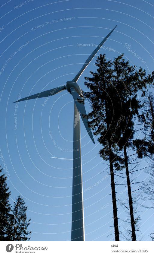 Windkraft am Roßkopf 5 Himmel Wald Linie Kraft Perspektive Energiewirtschaft Elektrizität Windkraftanlage Geometrie Paradies Waldlichtung Standort himmelblau