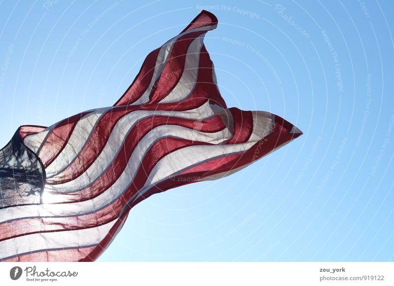 Stars and Stripes Zeichen Fahne Gefühle Kapitalwirtschaft Fortschritt Gesellschaft (Soziologie) Politik & Staat Farbfoto Außenaufnahme Detailaufnahme