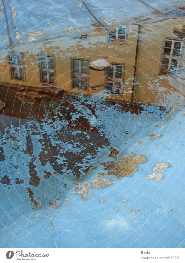 spiegelung Wasser blau Haus Fenster Reflexion & Spiegelung Pfütze
