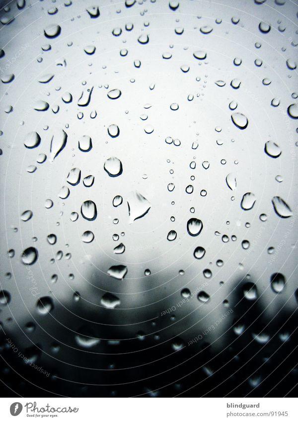 Raindrops On My Window Wasser Umwelt Fenster grau Traurigkeit Regen Wetter Glas nass Klima Wassertropfen trist Trauer Klarheit Unwetter feucht