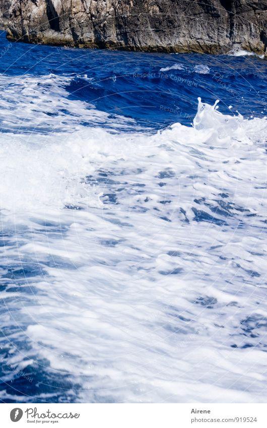 reißend Wasser Felsen Wellen Küste Meer bedrohlich frisch gigantisch stark blau weiß Kraft Leben Gischt tosen Wellengang tief Farbfoto Außenaufnahme