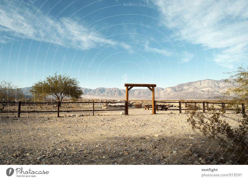 tor Umwelt Natur Landschaft Pflanze Tier Erde Sand Himmel Wolken Sonne Sommer Klima Schönes Wetter Baum Wüste Erholung wild blau Zaun Ranch Wildnis