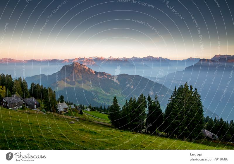 Rigi Scheidegg / Zentralschweiz Nr.IV Umwelt Natur Landschaft Luft Himmel Wolkenloser Himmel Horizont Sonne Sonnenaufgang Sonnenuntergang Sonnenlicht Sommer