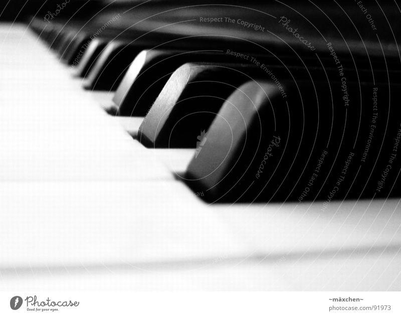 playing the piano Freude Musik Zusammensein Finger Romantik berühren Konzert Klaviatur Klavier Tiefenschärfe harmonisch Ton Klang Musikinstrument Lücke Klassik