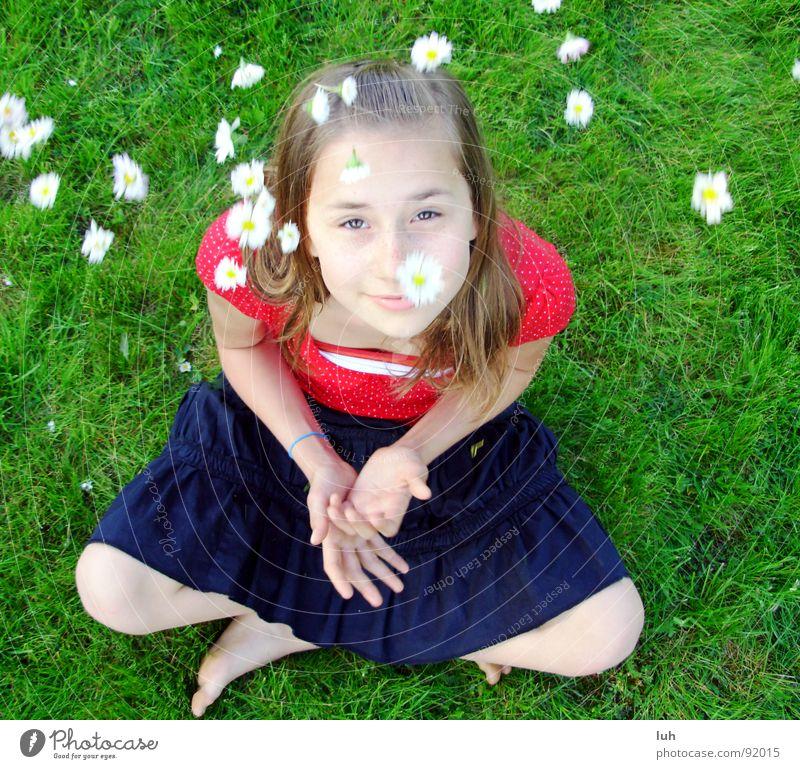 Sommerregen. 1 Kind Jugendliche grün weiß Mädchen rot Blume Freude schwarz Farbe Gras springen Frühling Gesundheit Haut