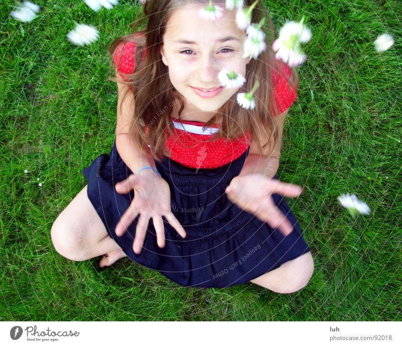 Sommerregen. 2 Gänseblümchen grün Gras Blume rot weiß Frühling springen Fröhlichkeit Gesundheit Regen Kind Jugendliche Märchen fantastisch Mädchen Rasen flowers