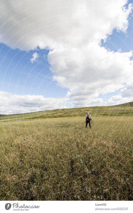 Backpacker im Sumpf wandern Natur Landschaft Erde Luft Himmel Wolken Horizont Sommer Dürre Gras Nutzpflanze Wiese Feld Moor Hardangervidda entdecken