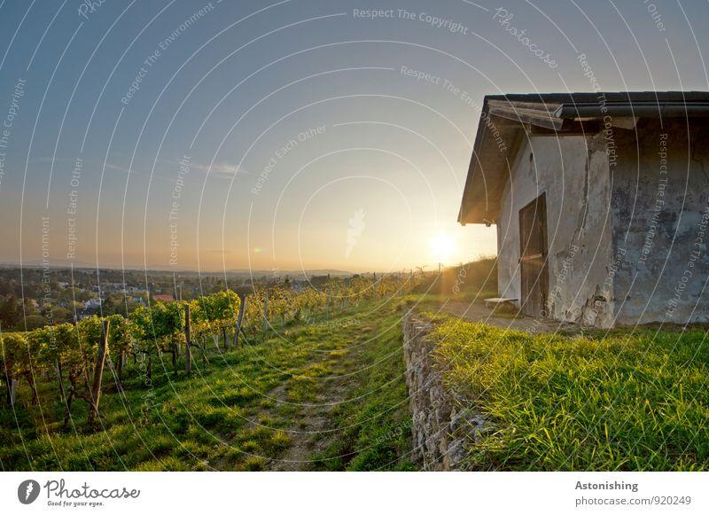 Hütte Umwelt Natur Landschaft Pflanze Luft Himmel Horizont Herbst Wetter Schönes Wetter Baum Gras Nutzpflanze Gebäude Mauer Wand Stein dunkel blau gelb grün