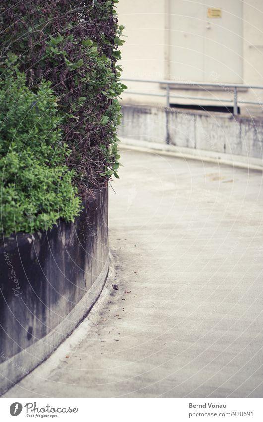 links Straße Wege & Pfade Beton Sträucher Stadt Stadtleben parken Kurve Verkehr grau grün dreckig trist Mauer Geländer Spuren Bogen Richtung PKW Außenaufnahme