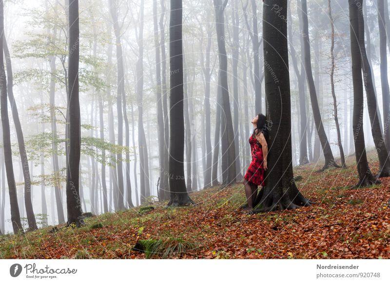 Wann kommt die Sonne..... Mensch Frau Natur Baum Erholung Landschaft ruhig Freude Wald Erwachsene Herbst feminin Glück Lifestyle Nebel stehen