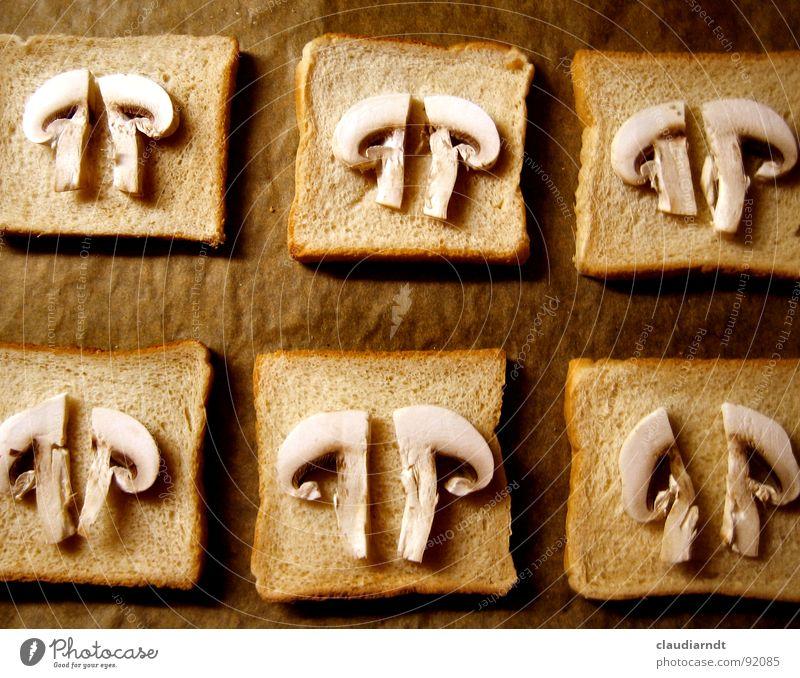 Champignons halbiert Mahlzeit Futter Blech kochen & garen Brot braun Hälfte Teilung belegen Belegtes Brot Muster Glätte Symmetrie Ernährung satt lecker
