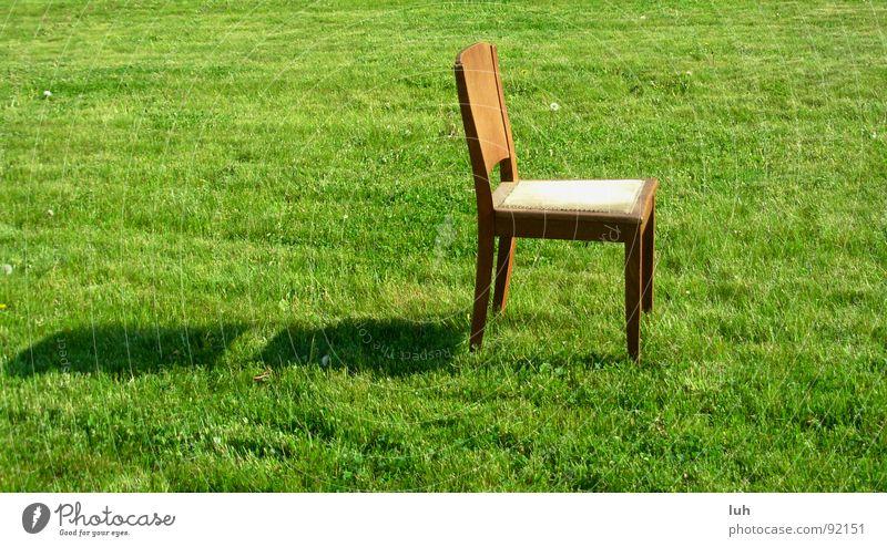 Der Naechste bitte. Holz Holzmehl braun grün Gras Frühling springen Sommer hinsetzen Wiese Einsamkeit Stuhl chair Garten garden brown Rasen Schatten shadow