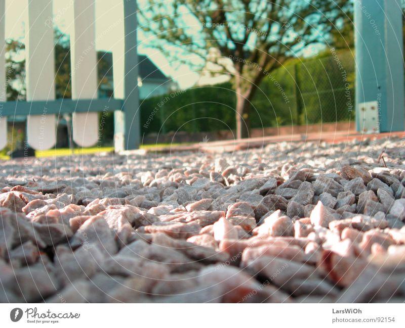 Kleinbürgerlich Kies Schotterweg Baum groß klein Zaun Garten Stein Natur Wege & Pfade Perspektive Holzbrett