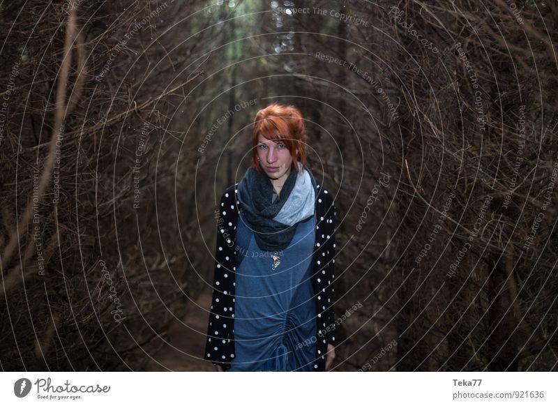 Waldfrau #6 Mensch Natur Jugendliche 18-30 Jahre Umwelt Erwachsene feminin Angst Abenteuer Aggression