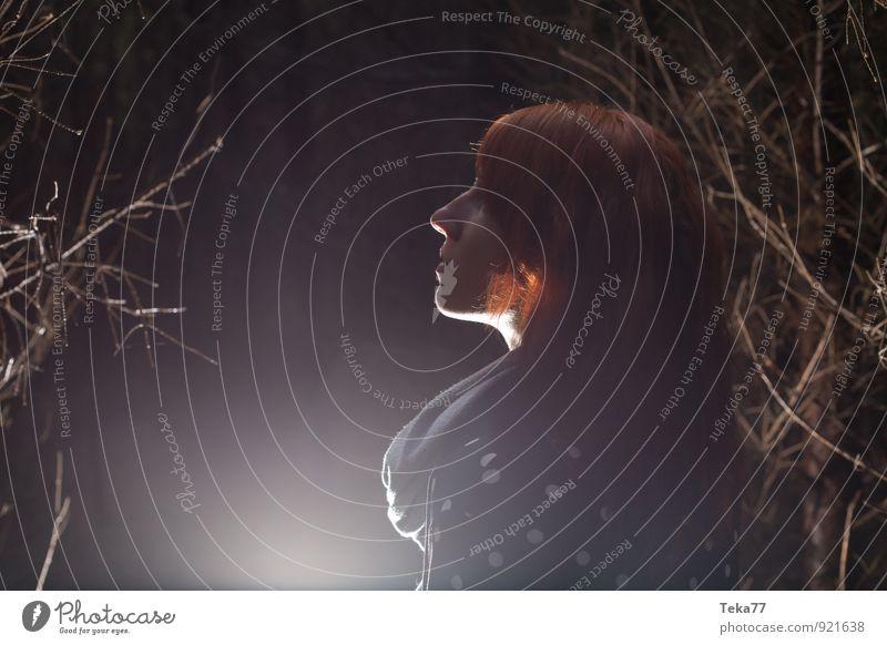 Waldfrau #1 Mensch Natur Jugendliche Baum Junge Frau 18-30 Jahre Umwelt Erwachsene feminin Abenteuer