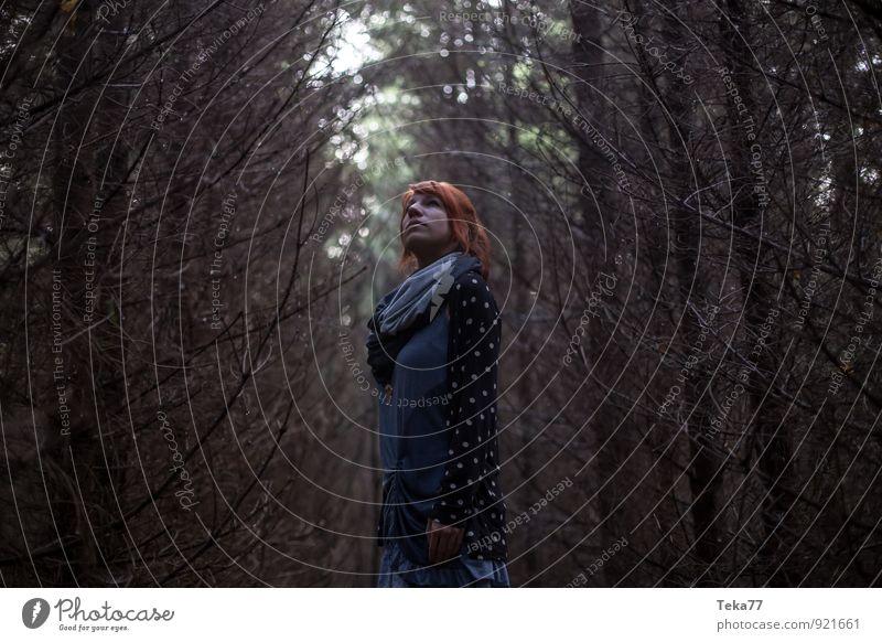Verlaufen - im Wald Mensch feminin 1 18-30 Jahre Jugendliche Erwachsene Umwelt Natur Landschaft Abenteuer Beginn Angst anstrengen chaotisch Einsamkeit Farbfoto