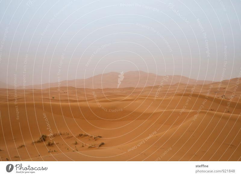 Wüste (4/10) Sand Düne Wärme Ferien & Urlaub & Reisen Tourismus Naher und Mittlerer Osten Arabien Sahara 100 und eine Nacht Marokko Algerien Tunesien Abenteuer
