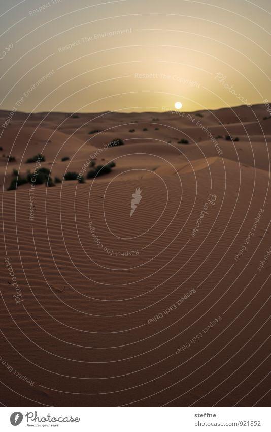 morgens IV Umwelt Natur Landschaft Sonne Sonnenaufgang Sonnenuntergang Sonnenlicht Schönes Wetter Wüste Sahara ästhetisch außergewöhnlich