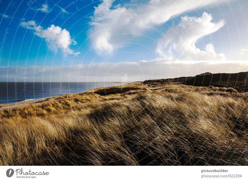 weit, weit weg - ein Tag am Meer Himmel Natur Ferien & Urlaub & Reisen blau Wasser Sommer Sonne Erholung Landschaft Wolken Strand Ferne gelb Küste
