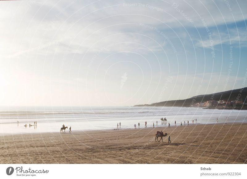 Strand von Taghazout Freizeit & Hobby Spielen Reiten Fußball Surfen Menschenmenge Landschaft Sand Wasser Sonnenlicht Hügel Wellen Küste Bucht Meer Atlantik