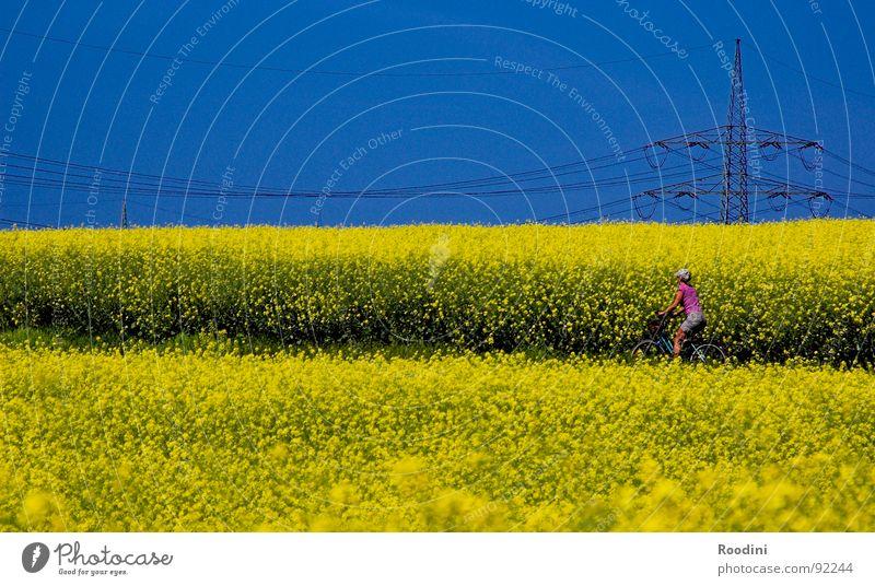#100 und weiter...:) Natur Ferien & Urlaub & Reisen Sommer Blume Straße Wege & Pfade Energiewirtschaft Feld Wachstum Fahrrad Ernährung Beginn Ausflug Elektrizität Fahrradfahren Fußweg