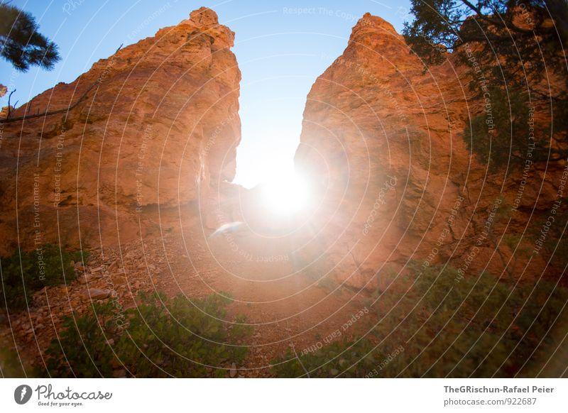 Gegenlicht Umwelt Natur Wüste blau braun gelb gold grün orange schwarz weiß Felsen sonne Baum Stein Bryce Canyon National Park Gesteinsformationen Ast Farbfoto