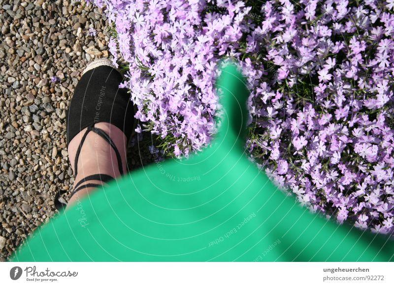 """Sommerkleid im Wind"" Frau Blume grün Gefühle Blüte Schuhe Kleid violett Sturm Kies Sandale"