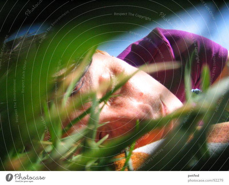 Sleep in the wilderness grün blau Sommer Gesicht ruhig Gefühle Gras schlafen Frieden violett Versteck