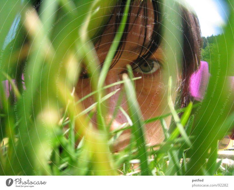 Durchdringen Mensch grün Sommer Gesicht Auge Gefühle Gras Haare & Frisuren violett Konzentration durchdringen