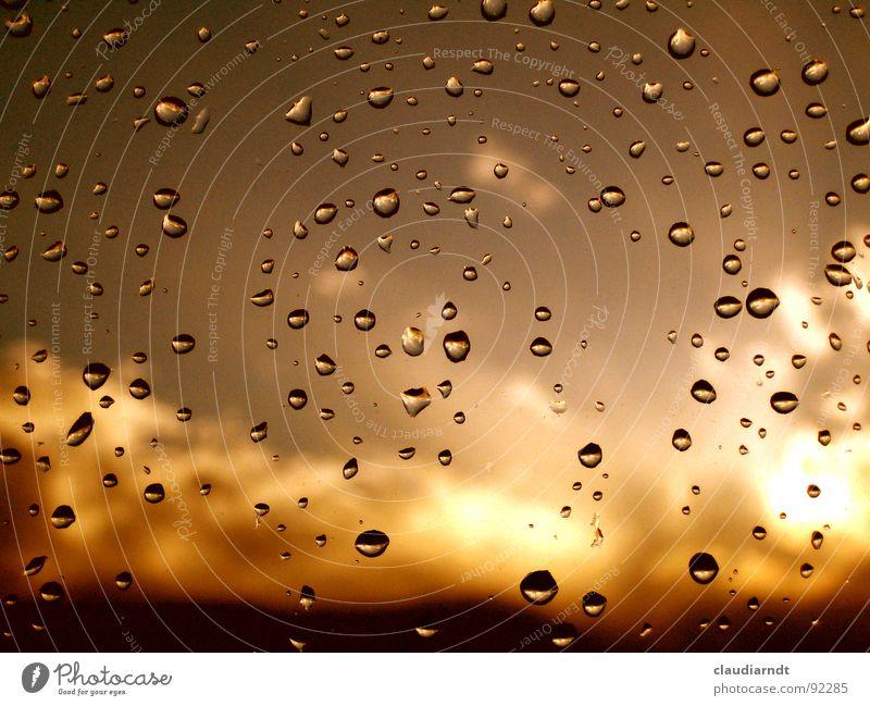 Fenstersprudel in Gold Himmel Wasser Sonne Wolken gelb Traurigkeit hell braun Regen Wetter gold dreckig Wassertropfen niedlich Trauer