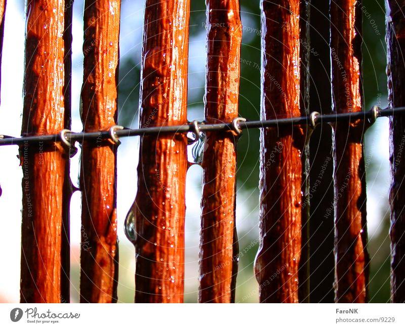 Zaun Holz Makroaufnahme Nahaufnahme Weide Wasser