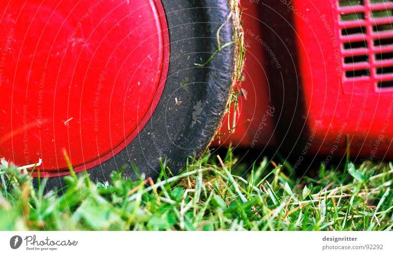 Über´n Rasen rasen Wiese Gras Garten Shorts kurz Schlag geschnitten Rasenmäher
