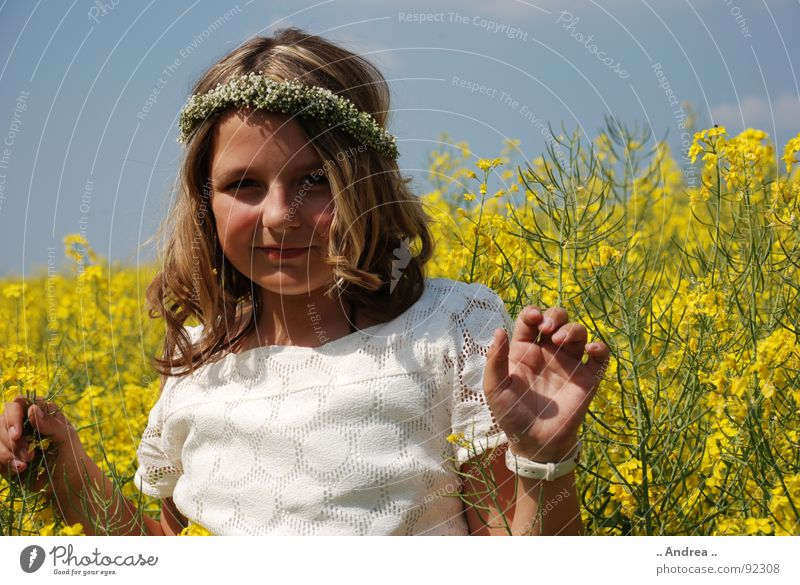 Im GELBEN Kind Mädchen Himmel Feld Glück blau gelb Raps Rapsfeld Kommunion Elfe weißes kleid Fee nikon d80 Farbfoto