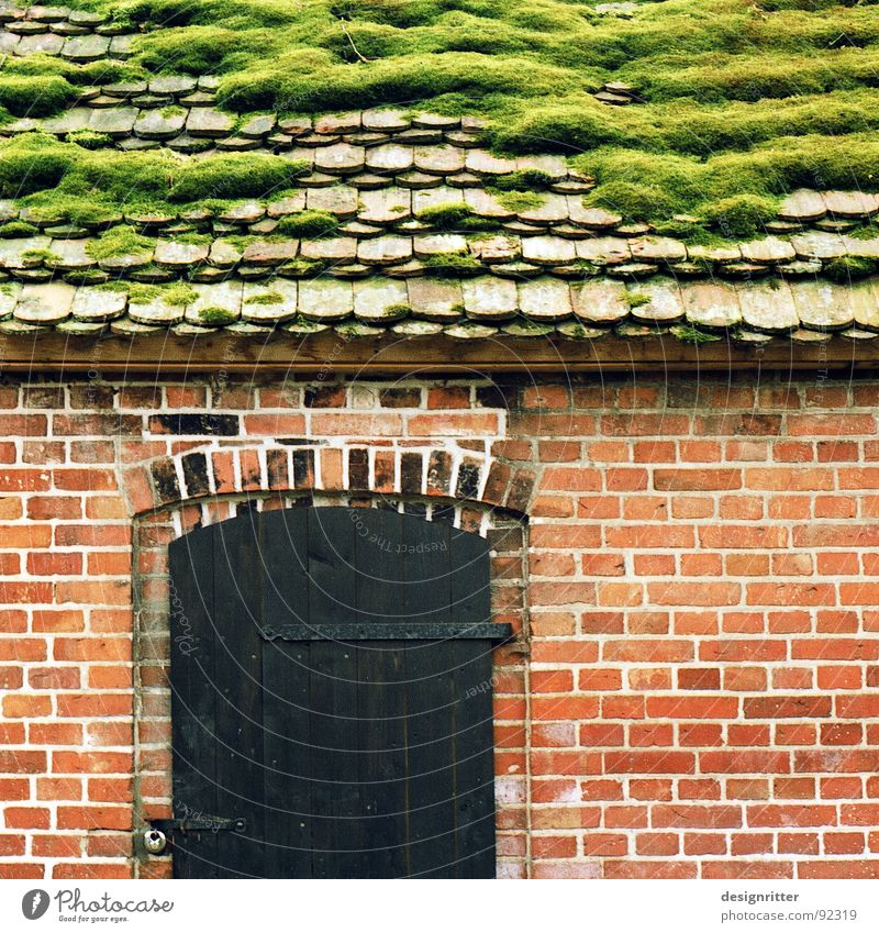 Gründach Dach Backstein Haus Holz Cottage Holzmehl Detailaufnahme alt Biberschwänze Hütte Tür Stein wuchern dosh moss roof old bonder brick clay brick door