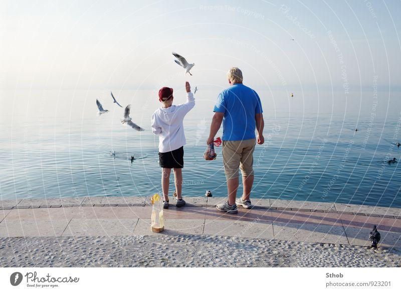 Möwen füttern am Gardasee Brot Freude Erholung Ferien & Urlaub & Reisen Ausflug Sonne maskulin Junge Mann Erwachsene Vater Familie & Verwandtschaft Kindheit