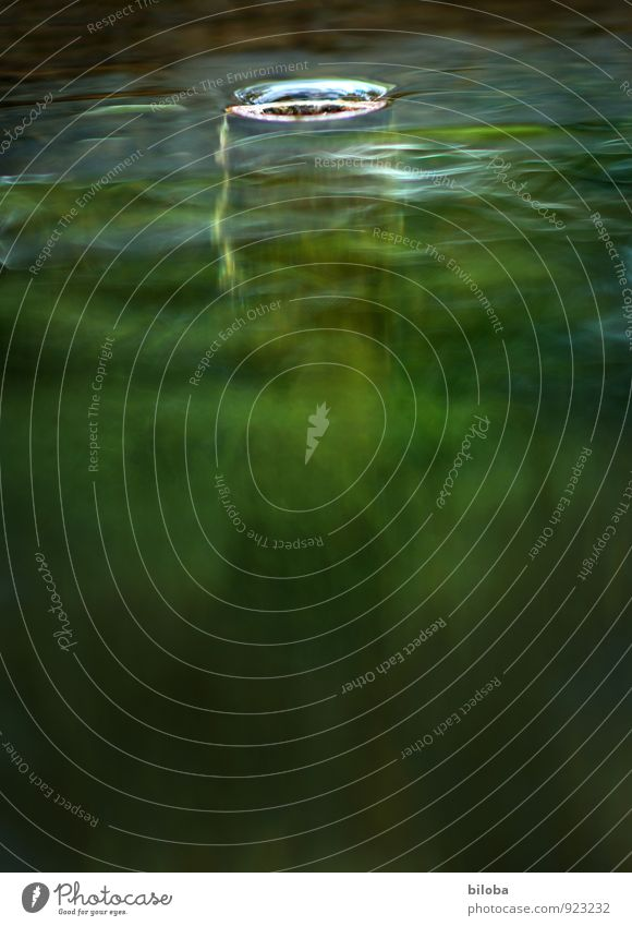 Brunnen Abfluss im seichten Gegelnlicht Wasser Quelle Trinkwasser Natur Urelemente Sauberkeit grün fließen Bewegung Strukturen & Formen Hintergrundbild Farbfoto