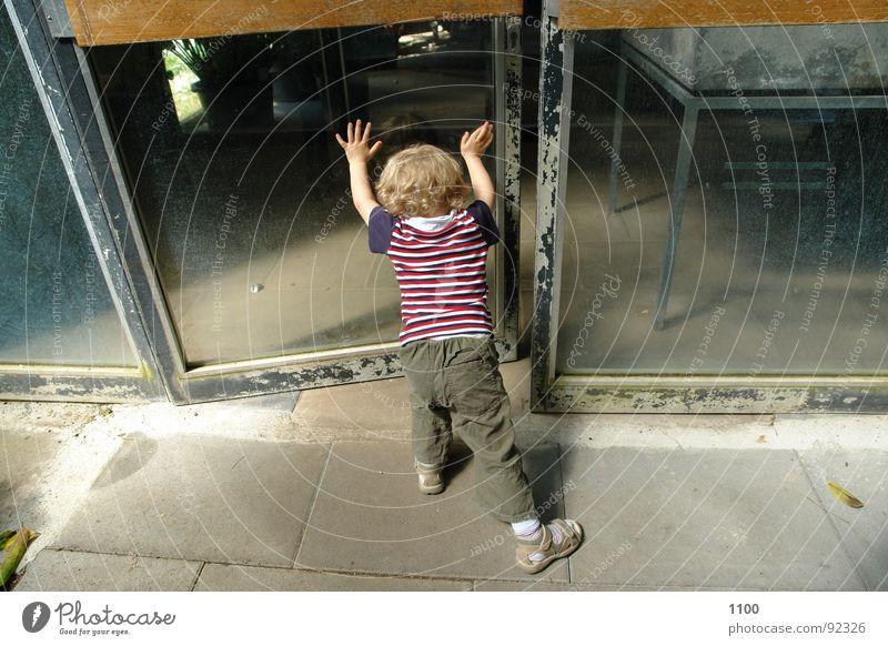 Kleiner Türöffner Kind Kleinkind Zwerg aufmachen Glastür offen drücken Fensterscheibe Junge rückwärts Rückansicht