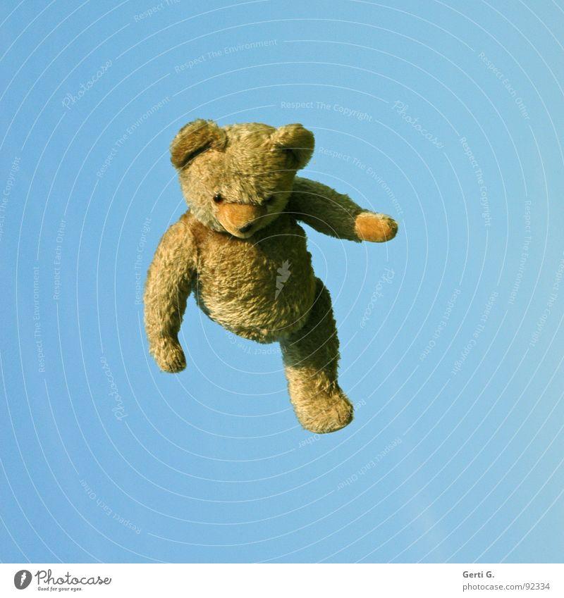 alle Teddys fliegen hooooch Himmel blau Freude springen Glück braun lustig Arme hoch Niveau Freizeit & Hobby Spielzeug Stofftiere obskur Schönes Wetter