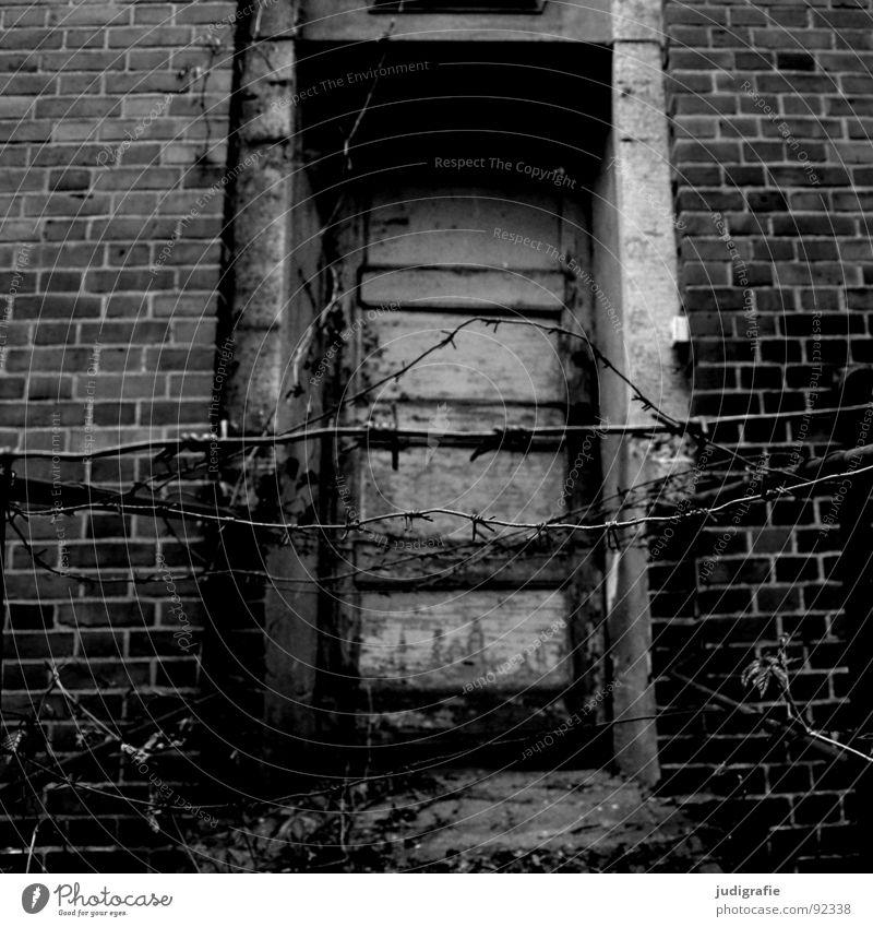 Heilstätte alt Einsamkeit Haus Gebäude Traurigkeit Tür Angst kaputt Geländer verfallen Backstein gruselig schäbig Eingang Ruine gefangen