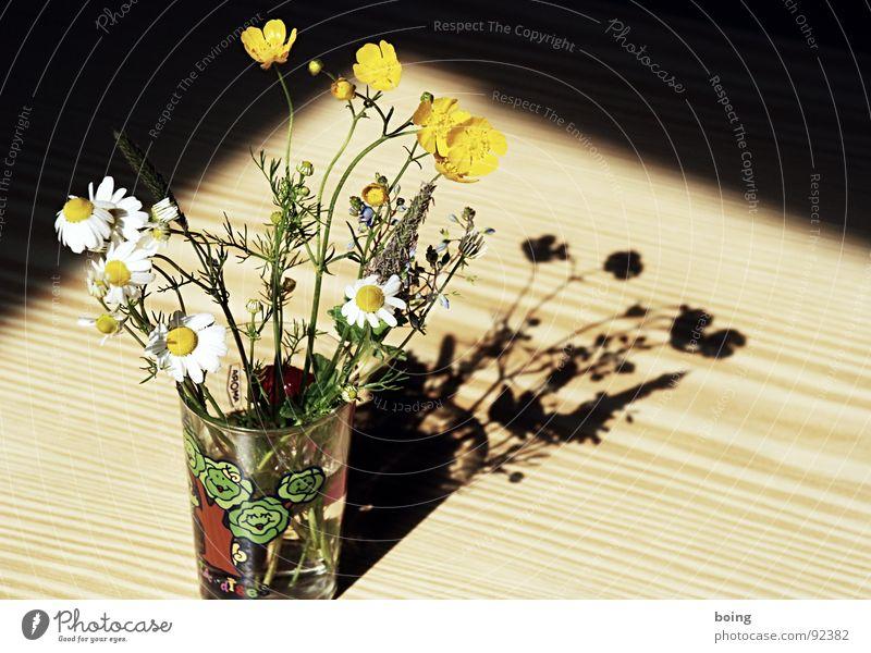 you should fall into my arms and tremble like a flower Sonne Blume Freude Wiese Gras Blüte Glas Glas Geburtstag Tee Blühend Blumenstrauß Löwenzahn Überraschung Vase Qualität
