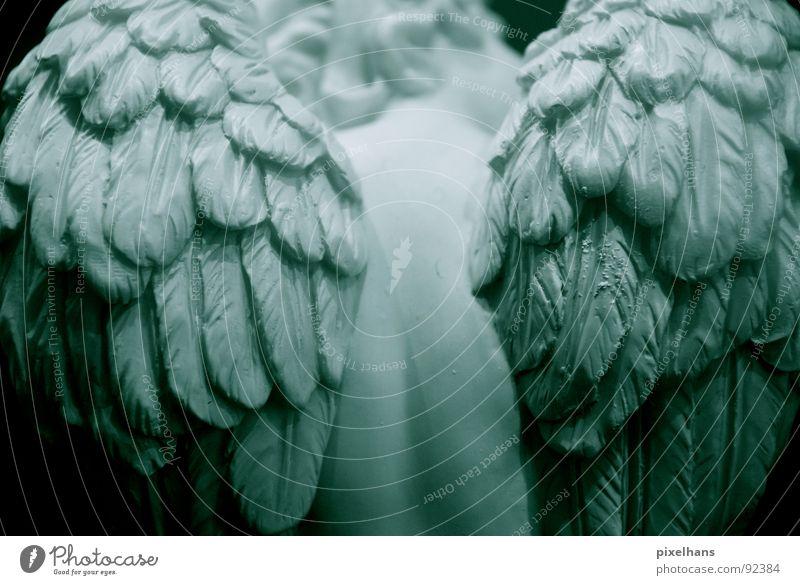 cold silence Engel Statue Skulptur skulptural Rückansicht Flügel Feder Rücken Anschnitt Detailaufnahme Bildausschnitt weiß
