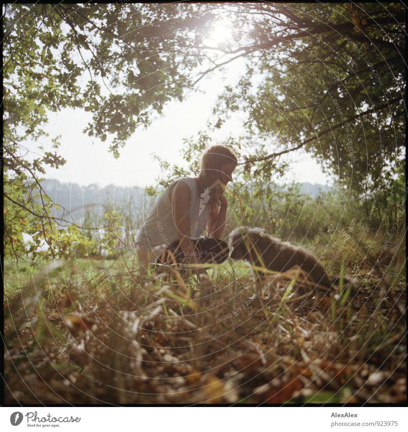 kleiner Dissens am Rande Hund Natur Jugendliche schön Baum Junge Frau 18-30 Jahre Erwachsene Gras natürlich Zusammensein Freizeit & Hobby wild Idylle Sträucher