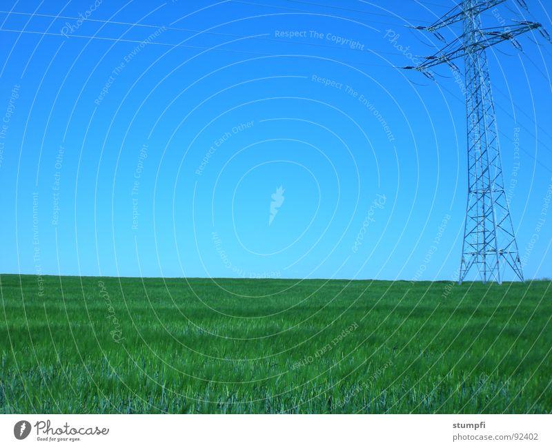 natur und technik Frühling Sommer Feld wandern Weizen Luft grün Gras Wiese Elektrizität Getreide Himmel blau Natur Strommast