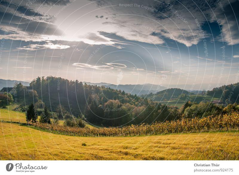Herbststimmung Wellness Leben harmonisch Wohlgefühl Zufriedenheit Sinnesorgane Erholung ruhig Meditation Ferien & Urlaub & Reisen Tourismus Ausflug Ferne